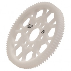 48 dp 79T Spur Gear